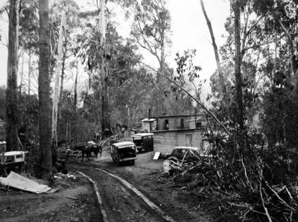 Tábor Tumut Ponds v roce 1952 - zdroj: NAA 11258079
